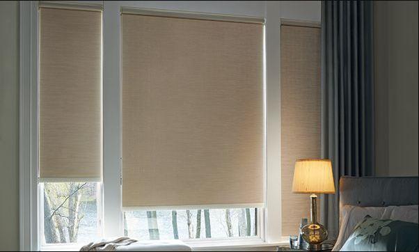 windows shades